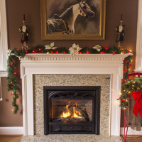 Valor Horizon with Granite Surround and Hearth