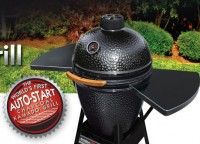 Black Olive Charcoal Grill/Smoker